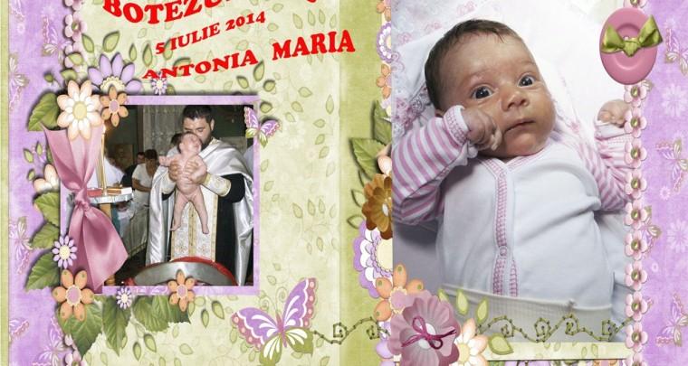 Mapa Botez Antonia Maria