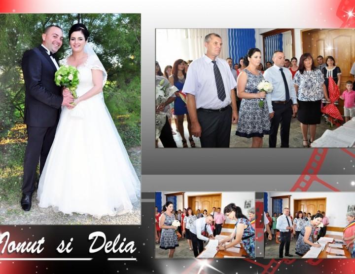 Mapa Album Ionut si Delia